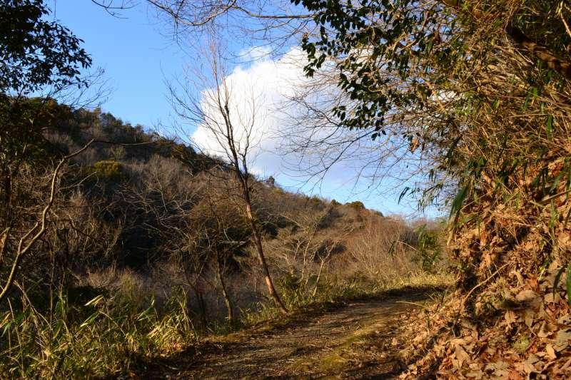 岡崎のトレイル