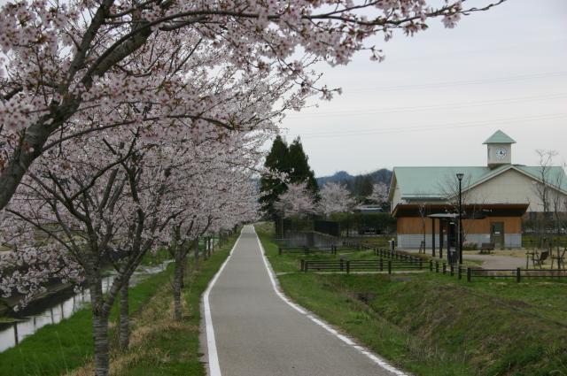 四国山香りの森公園サイクリングロード