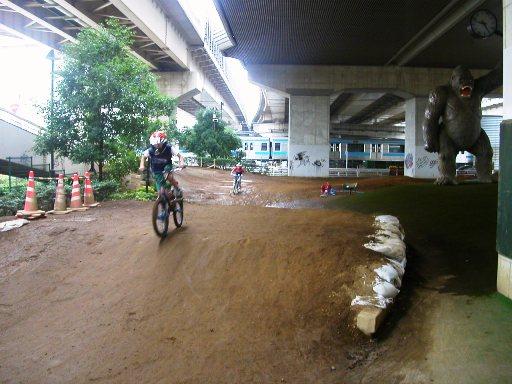 ゴリラ公園BMXコース